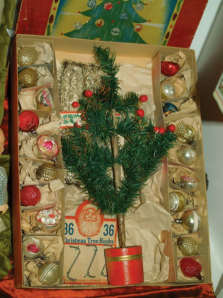 Tree in Box