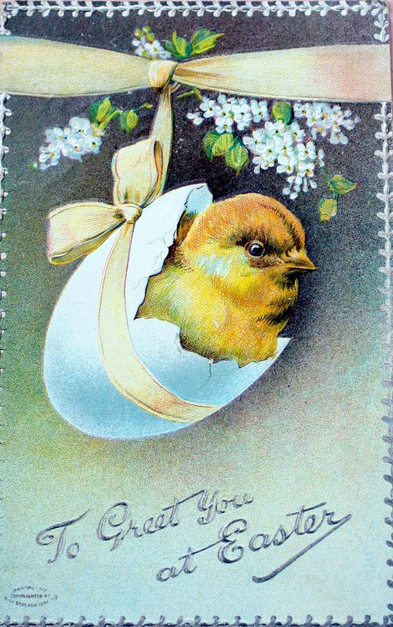 Mitzismiscellany_chick_egg_postcard