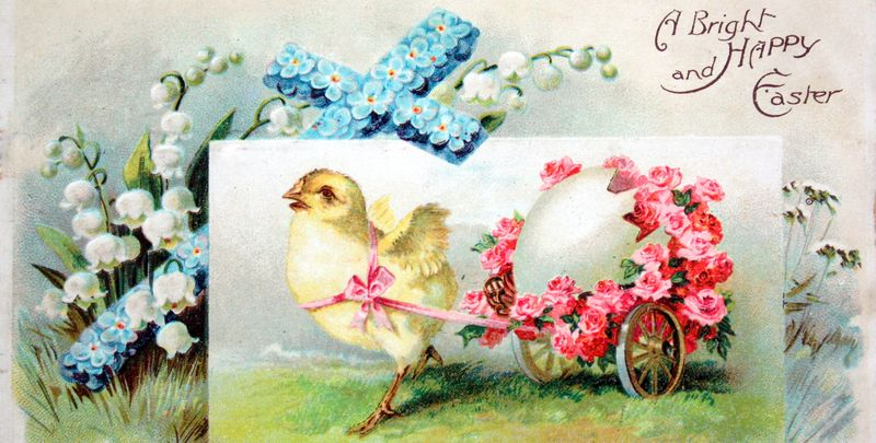 Mitzismiscellany_chick_cart_postcard